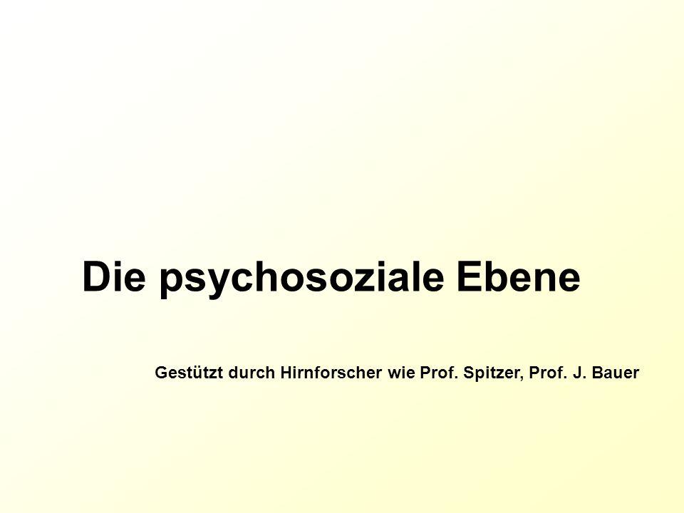 Die psychosoziale Ebene