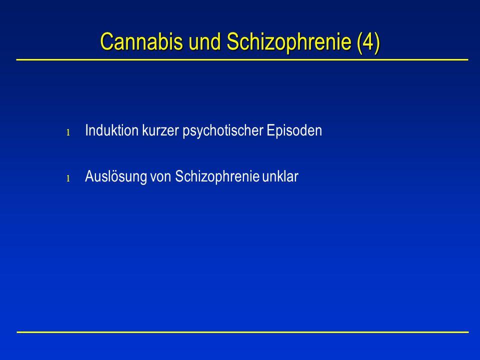 Cannabis und Schizophrenie (4)