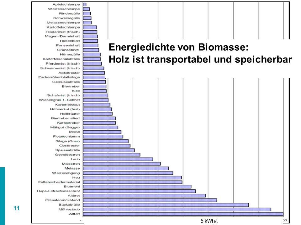 Energiedichte von Biomasse: Holz ist transportabel und speicherbar