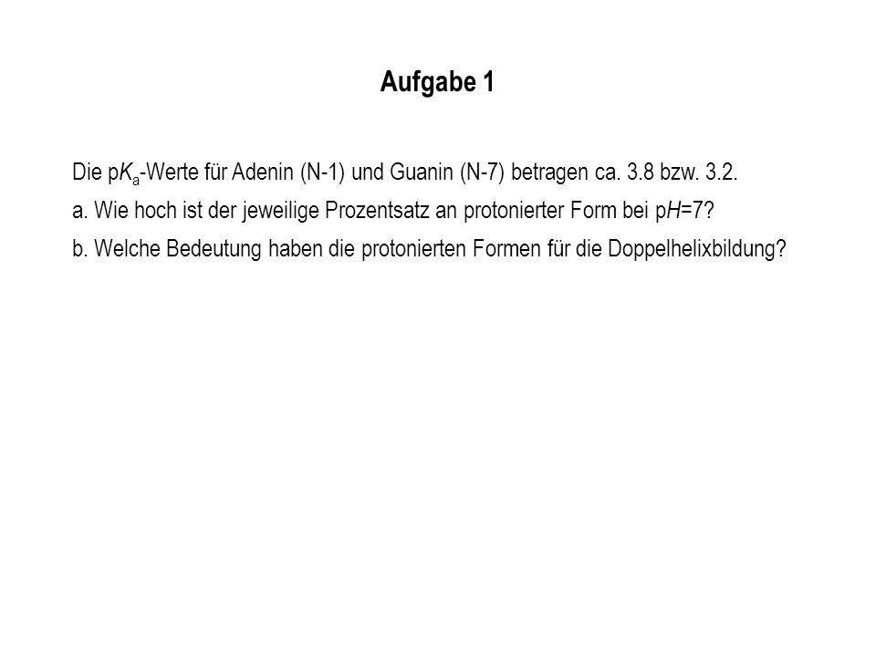 Aufgabe 1 Die pKa-Werte für Adenin (N-1) und Guanin (N-7) betragen ca. 3.8 bzw. 3.2.