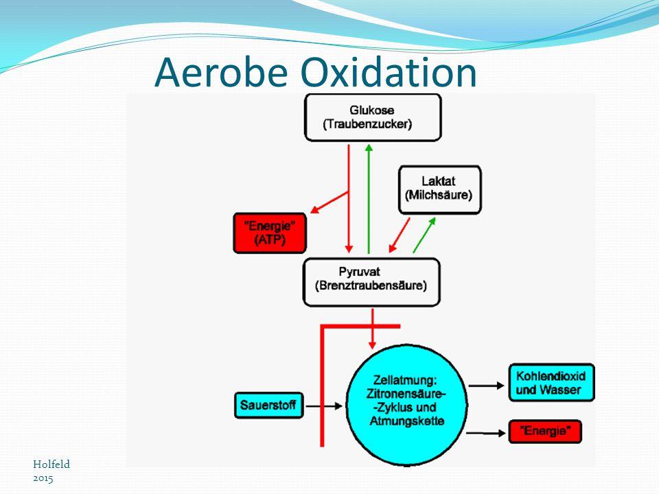 Aerobe Oxidation Holfeld 2015