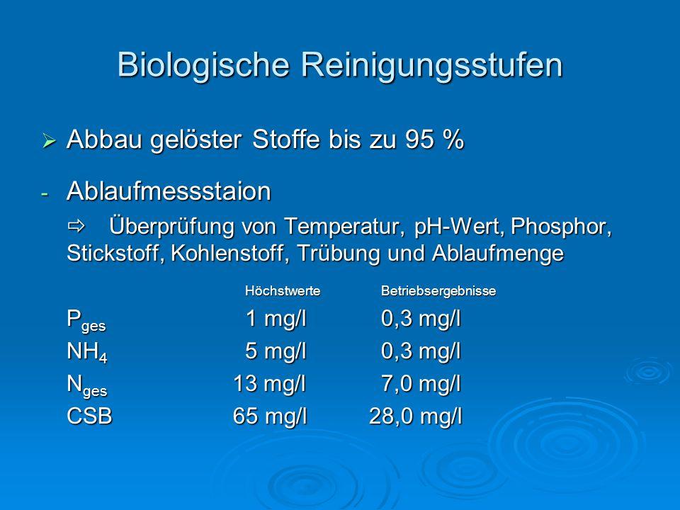 Biologische Reinigungsstufen