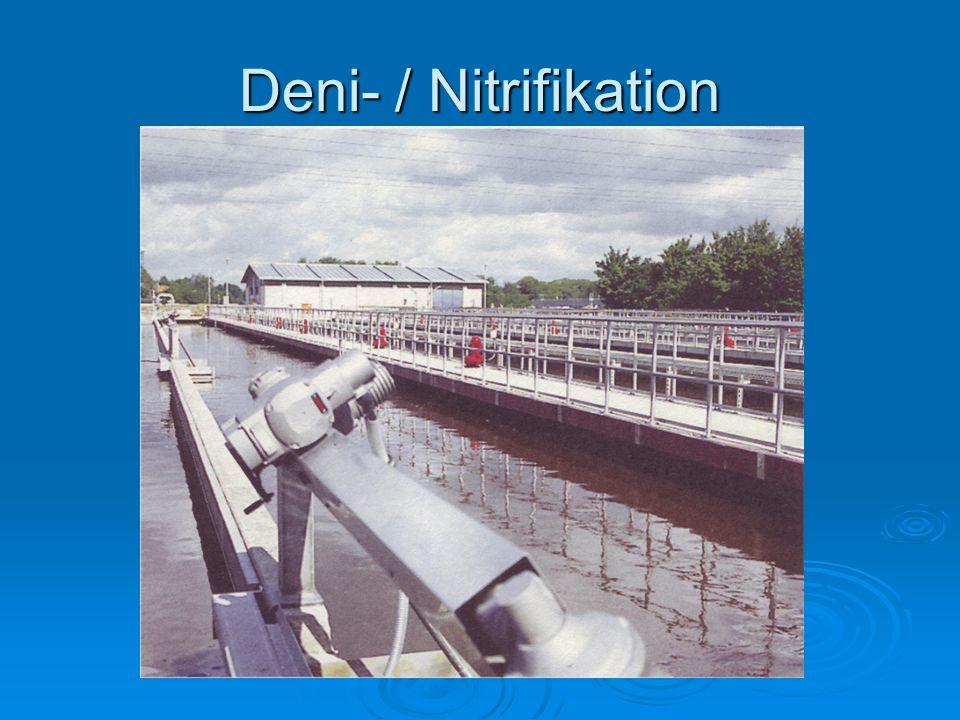 Deni- / Nitrifikation