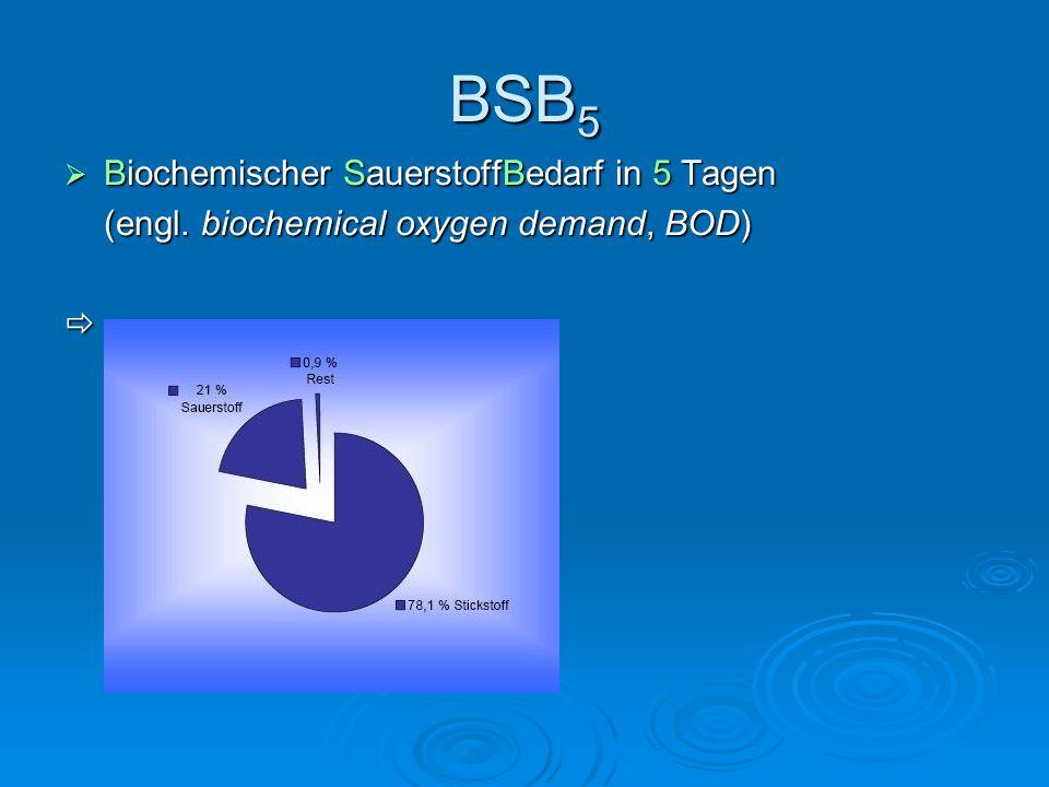 BSB5 Biochemischer SauerstoffBedarf in 5 Tagen