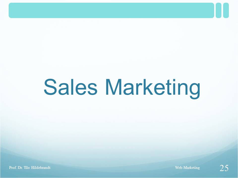 Sales Marketing Prof. Dr. Tilo Hildebrandt Web-Marketing