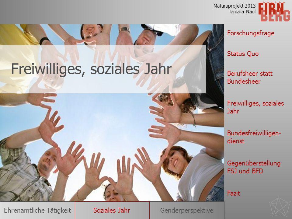 Freiwilliges, soziales Jahr