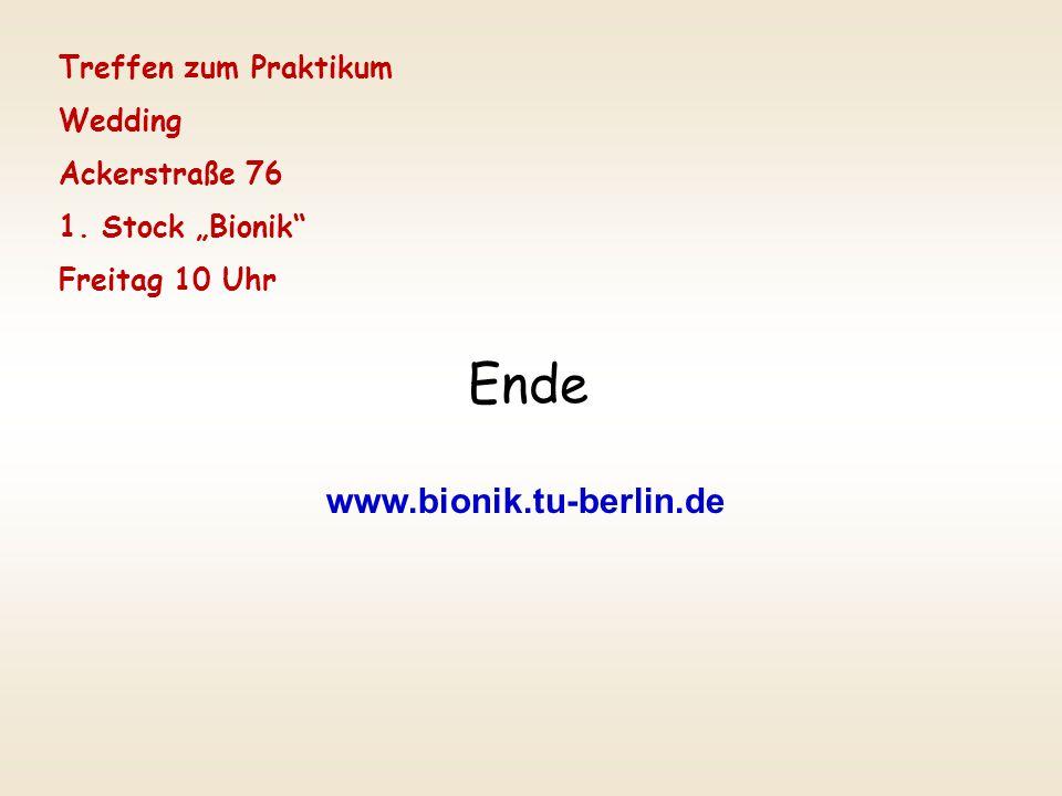 Ende www.bionik.tu-berlin.de Treffen zum Praktikum Wedding