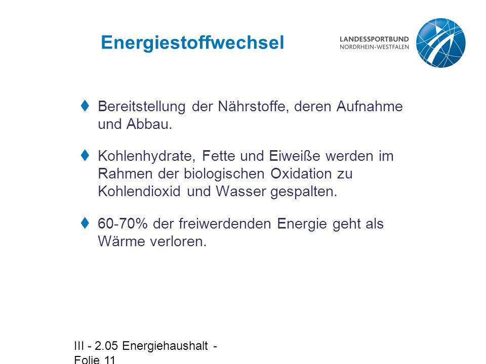 Energiestoffwechsel Bereitstellung der Nährstoffe, deren Aufnahme und Abbau.