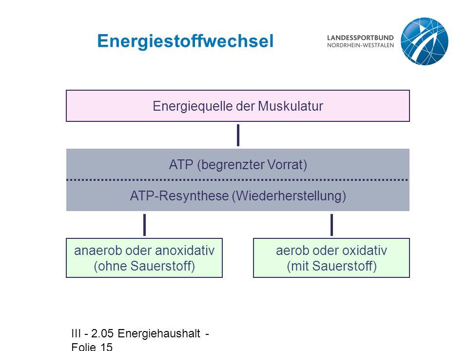 Energiestoffwechsel Energiequelle der Muskulatur