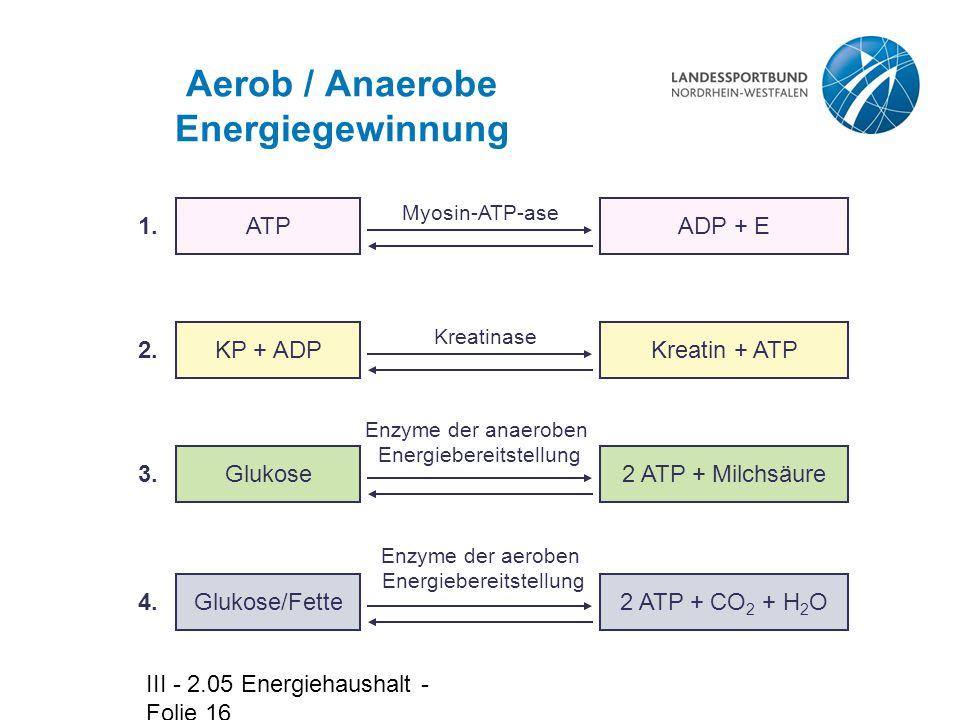 Aerob / Anaerobe Energiegewinnung