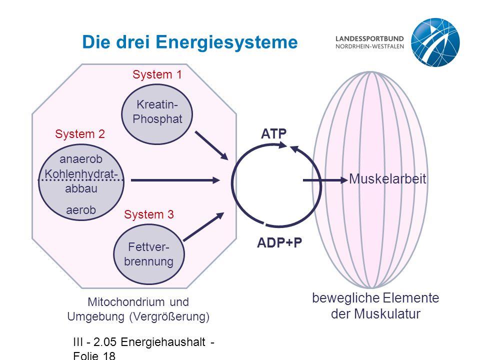 Die drei Energiesysteme