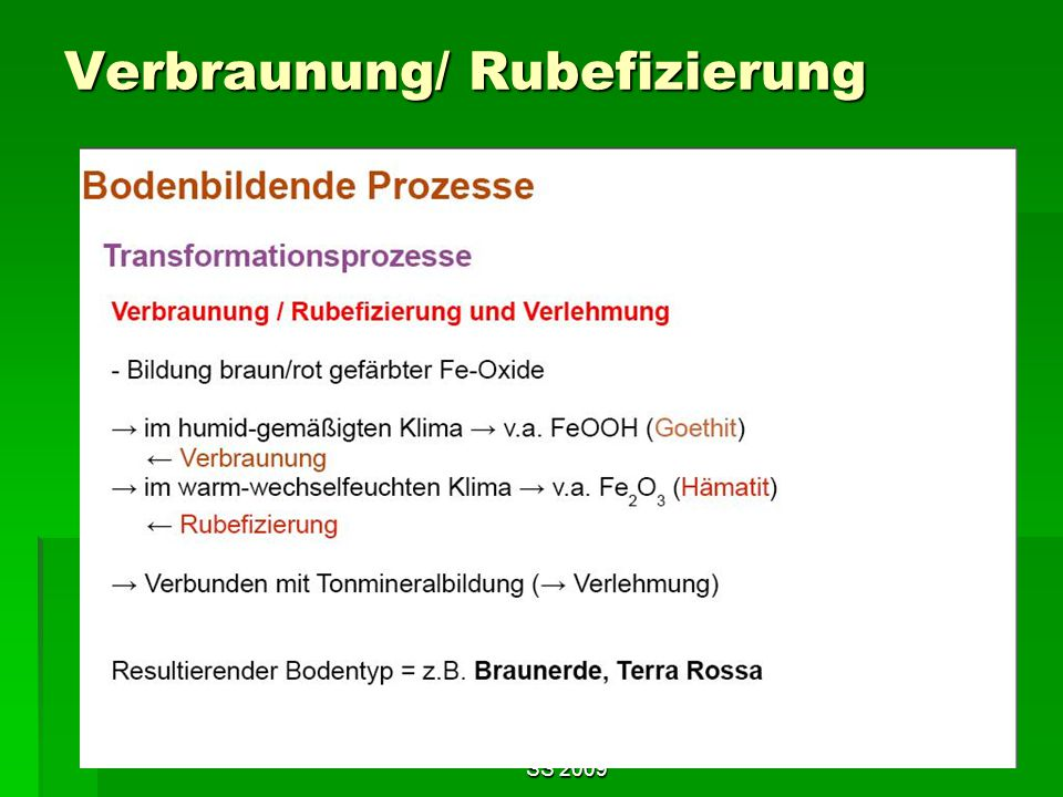 Verbraunung/ Rubefizierung