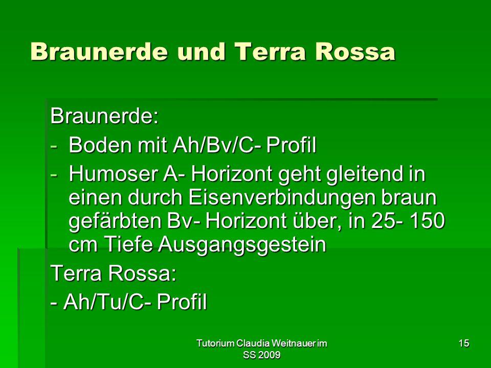 Braunerde und Terra Rossa