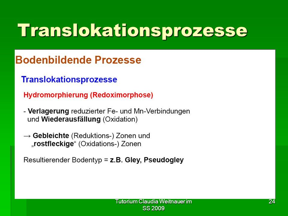 Translokationsprozesse