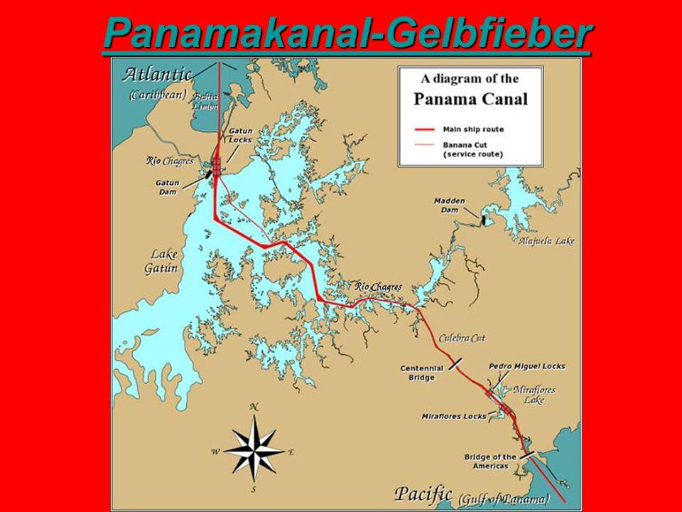 Panamakanal-Gelbfieber