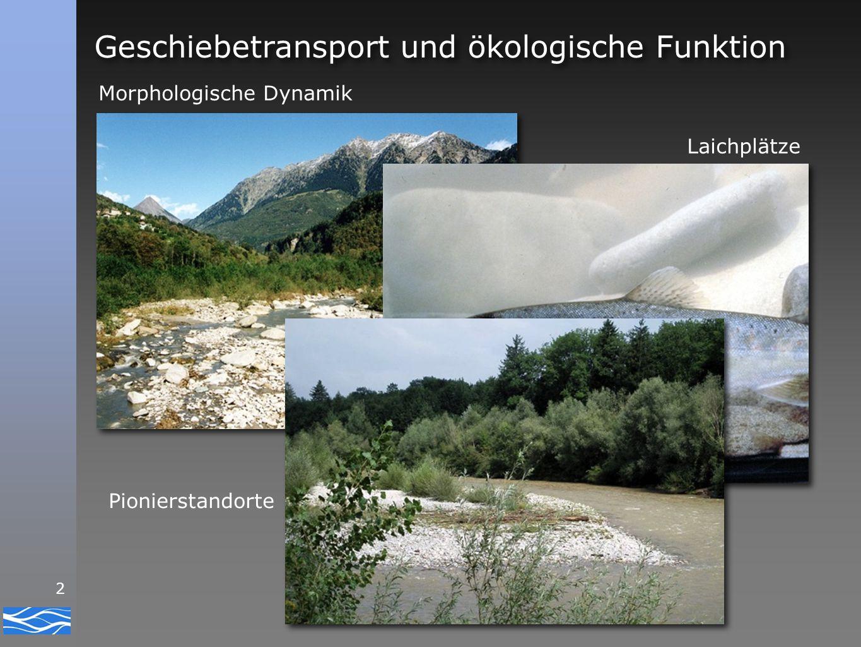 Geschiebetransport und ökologische Funktion