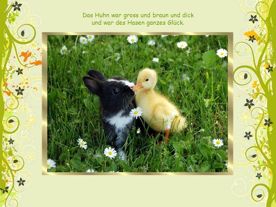 Das Huhn war gross und braun und dick und war des Hasen ganzes Glück.