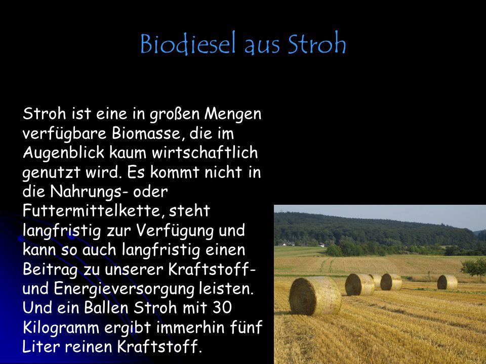 Biodiesel aus Stroh