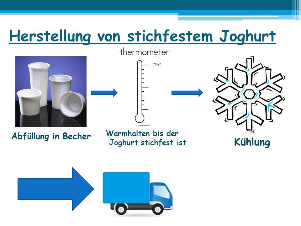 Herstellung von stichfestem Joghurt