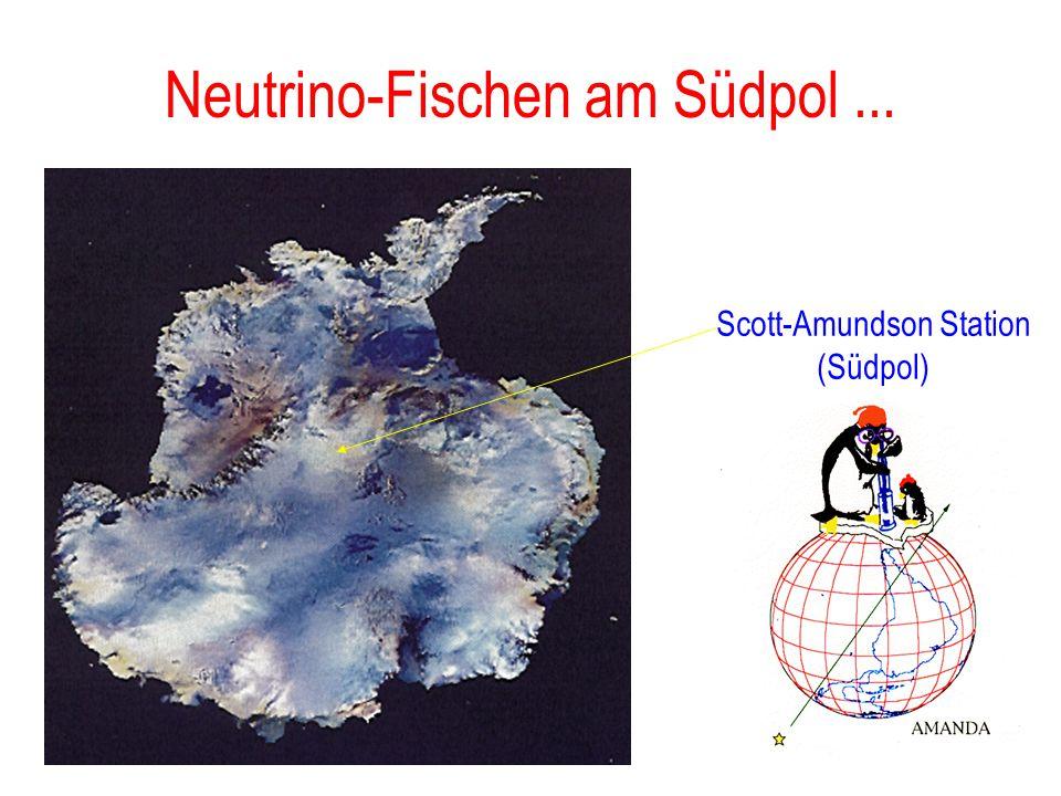 Neutrino-Fischen am Südpol ...