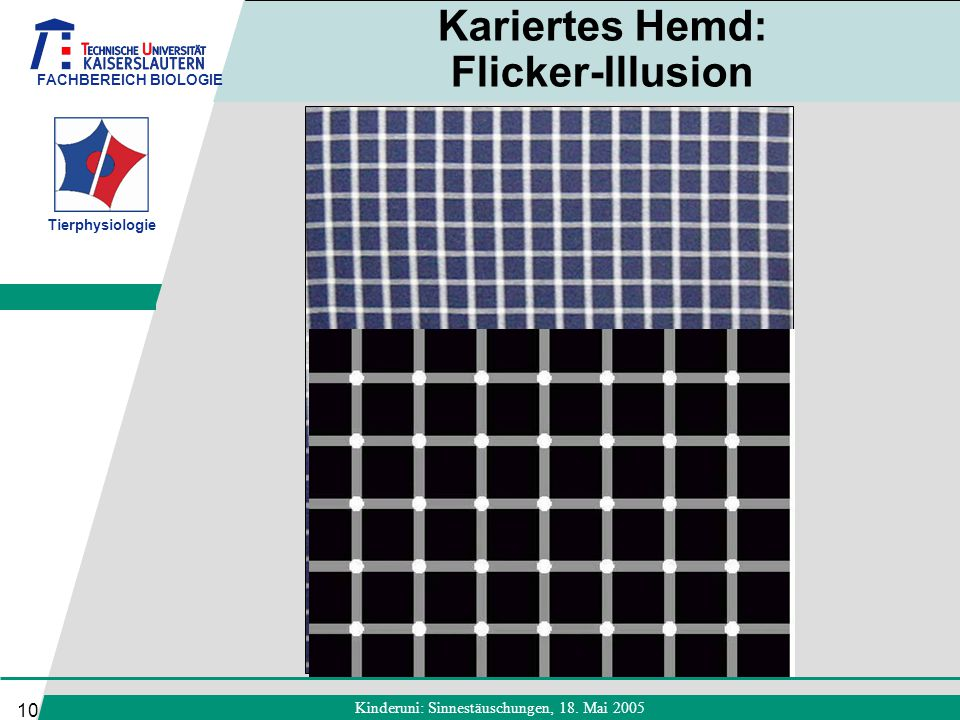 Kariertes Hemd: Flicker-Illusion