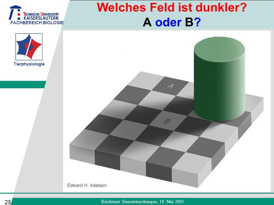 Welches Feld ist dunkler A oder B