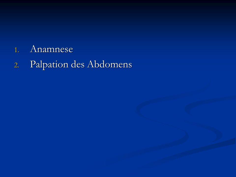 Anamnese Palpation des Abdomens