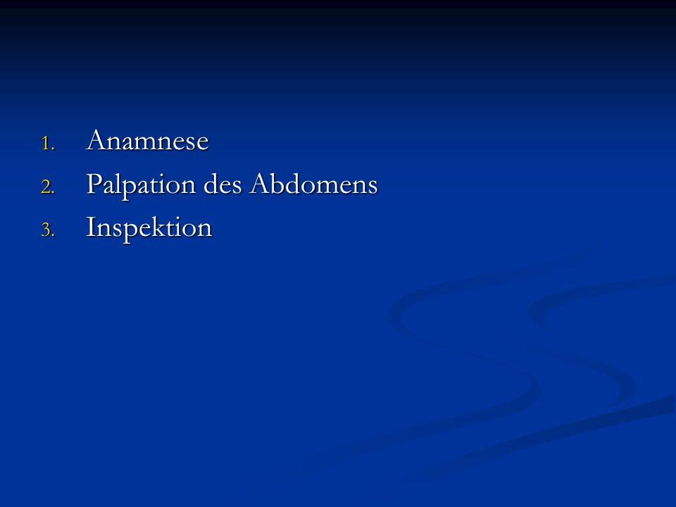 Anamnese Palpation des Abdomens Inspektion