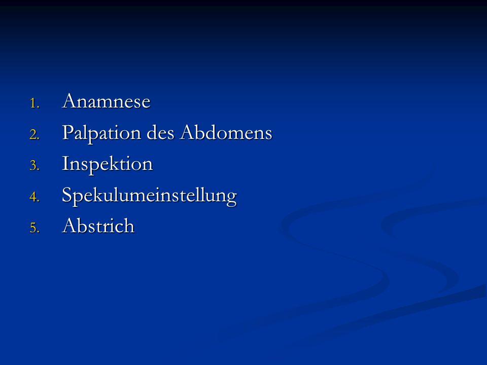 Anamnese Palpation des Abdomens Inspektion Spekulumeinstellung Abstrich
