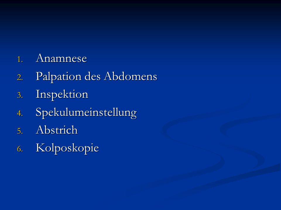 Anamnese Palpation des Abdomens Inspektion Spekulumeinstellung Abstrich Kolposkopie