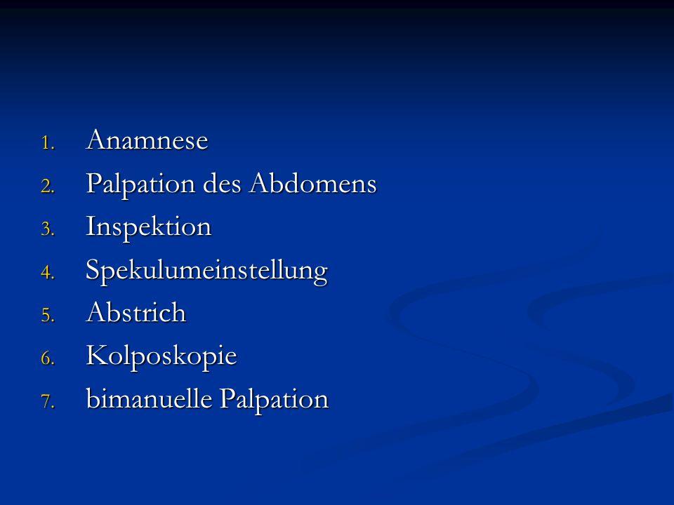 Anamnese Palpation des Abdomens. Inspektion. Spekulumeinstellung.
