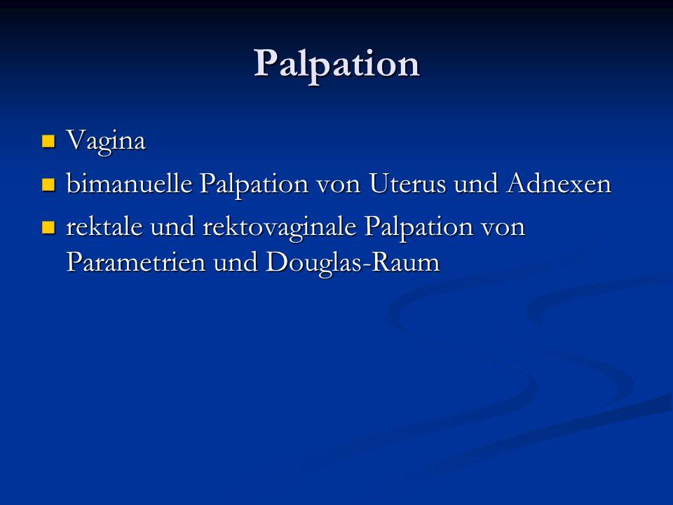 Palpation Vagina bimanuelle Palpation von Uterus und Adnexen