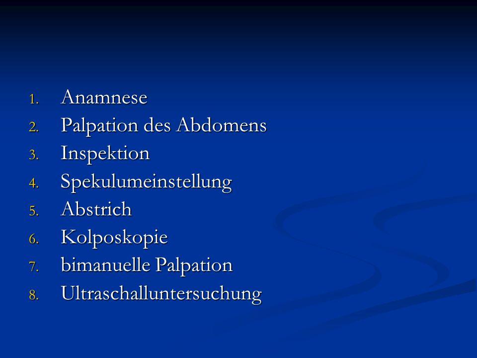 Anamnese Palpation des Abdomens. Inspektion. Spekulumeinstellung. Abstrich. Kolposkopie. bimanuelle Palpation.