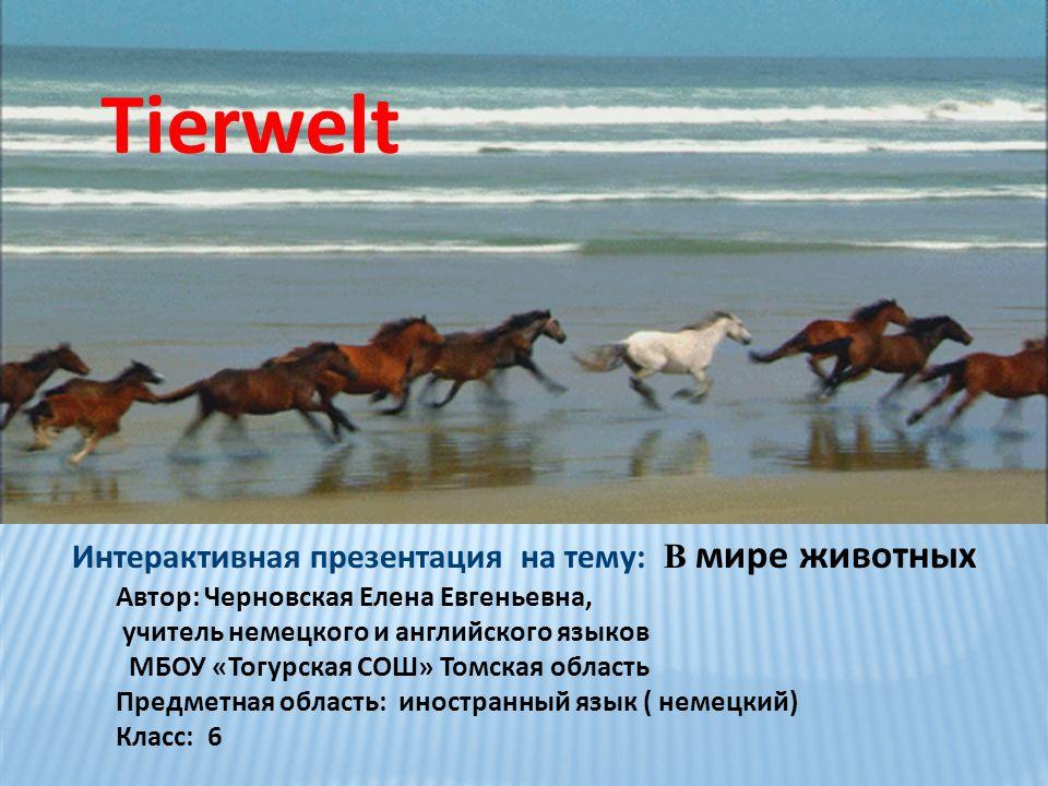 Интерактивная презентация на тему: В мире животных
