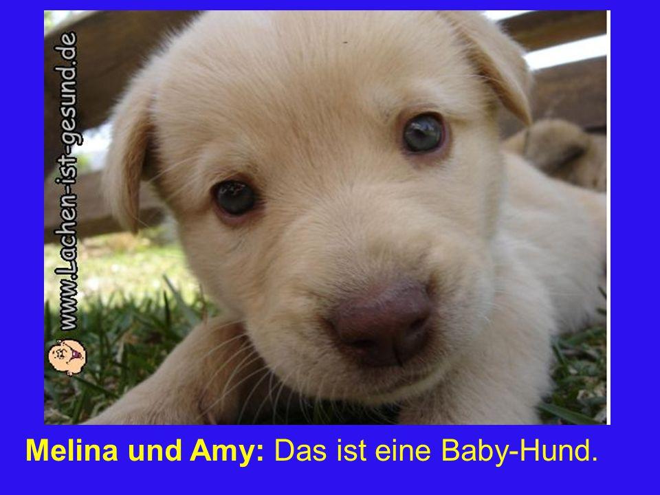 Melina und Amy: Das ist eine Baby-Hund.