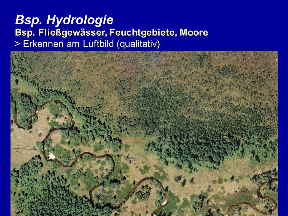 Bsp. Hydrologie Bsp. Fließgewässer, Feuchtgebiete, Moore