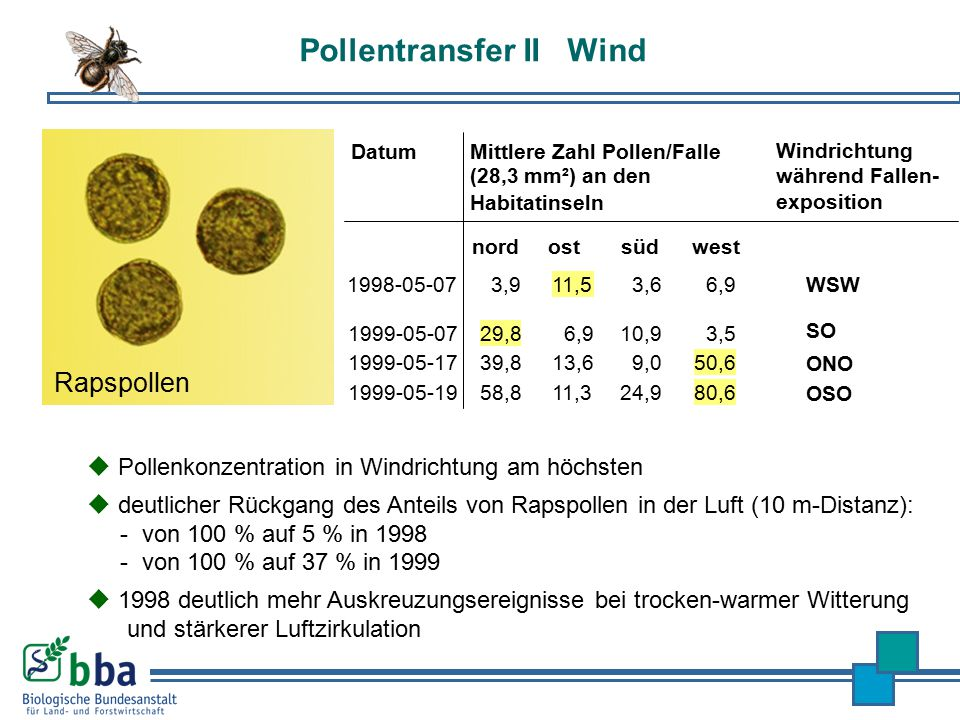 Pollentransfer II Wind