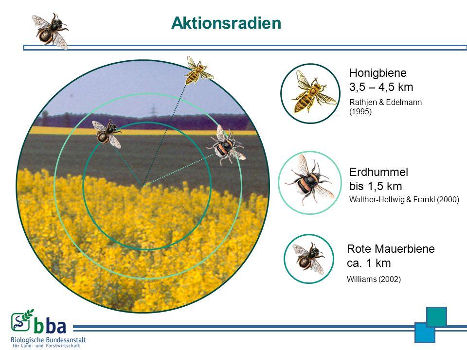 Aktionsradien Honigbiene 3,5 – 4,5 km Erdhummel bis 1,5 km