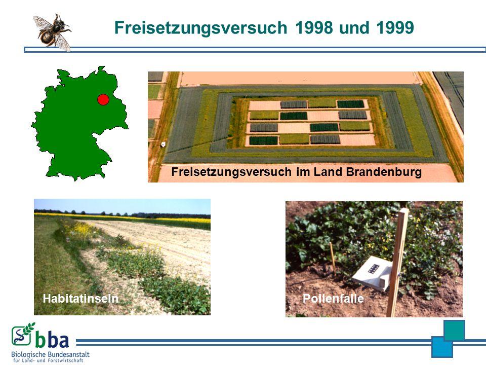 Freisetzungsversuch 1998 und 1999
