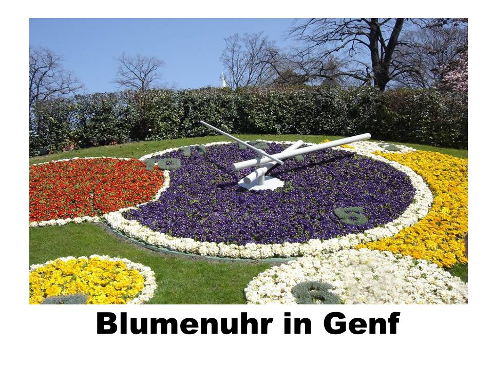 Blumenuhr in Genf