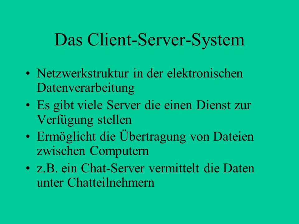 Das Client-Server-System