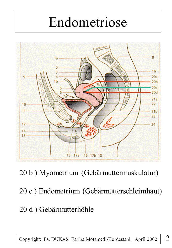 Endometriose 20 b ) Myometrium (Gebärmuttermuskulatur) 20 c ) Endometrium (Gebärmutterschleimhaut) 20 d ) Gebärmutterhöhle.