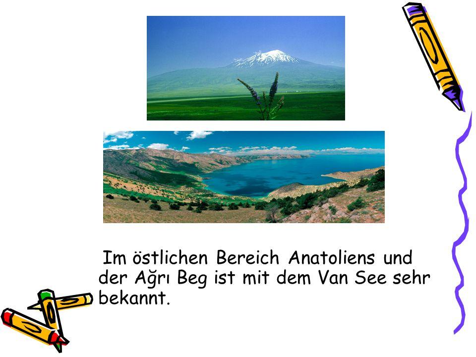 Im östlichen Bereich Anatoliens und der Ağrı Beg ist mit dem Van See sehr bekannt.