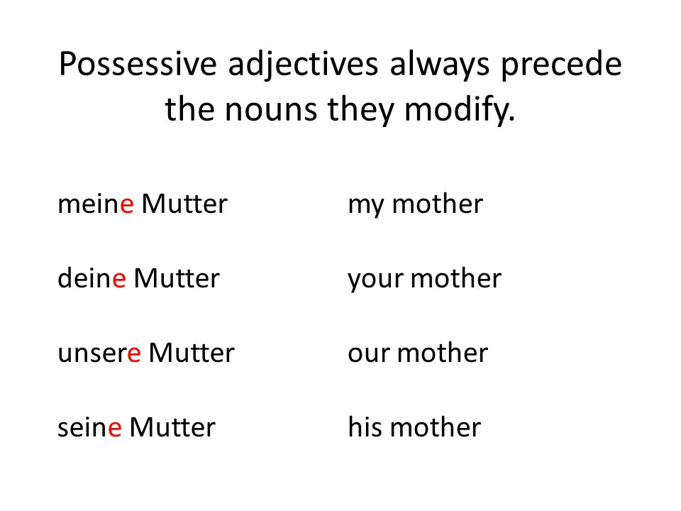 Possessive adjectives always precede the nouns they modify.