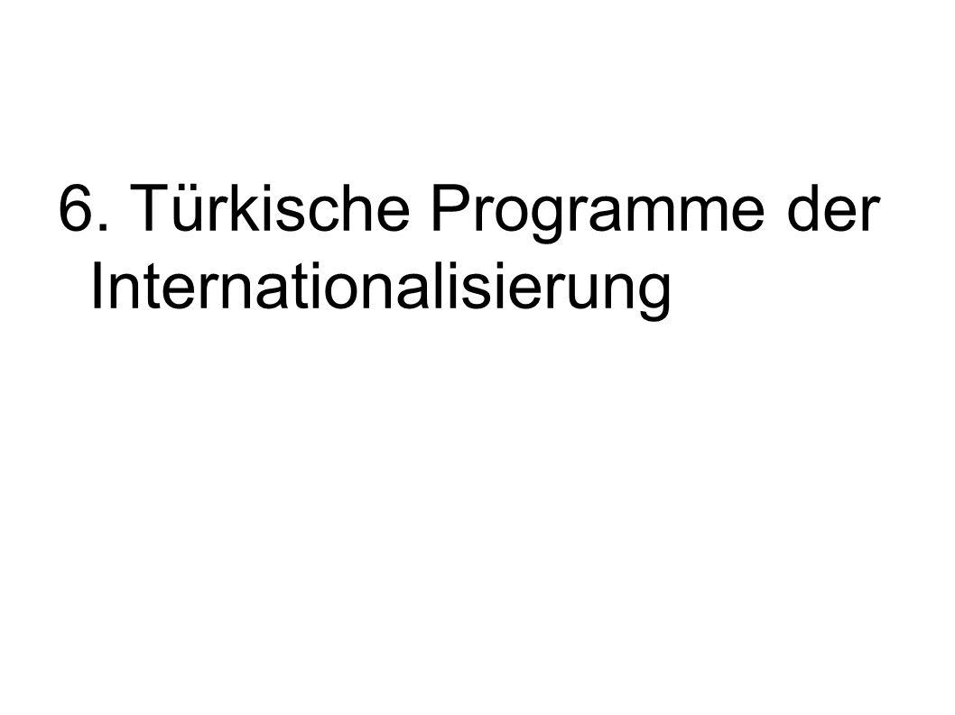 6. Türkische Programme der Internationalisierung