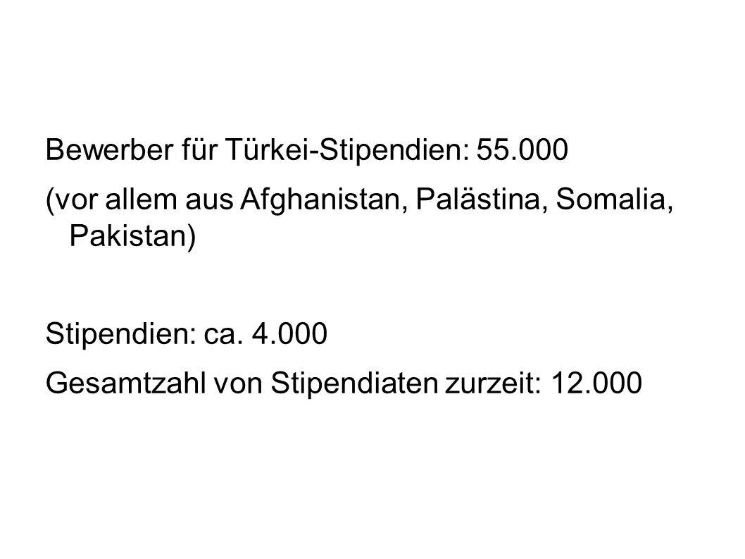 Bewerber für Türkei-Stipendien: 55.000