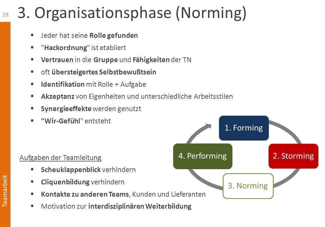 3. Organisationsphase (Norming)