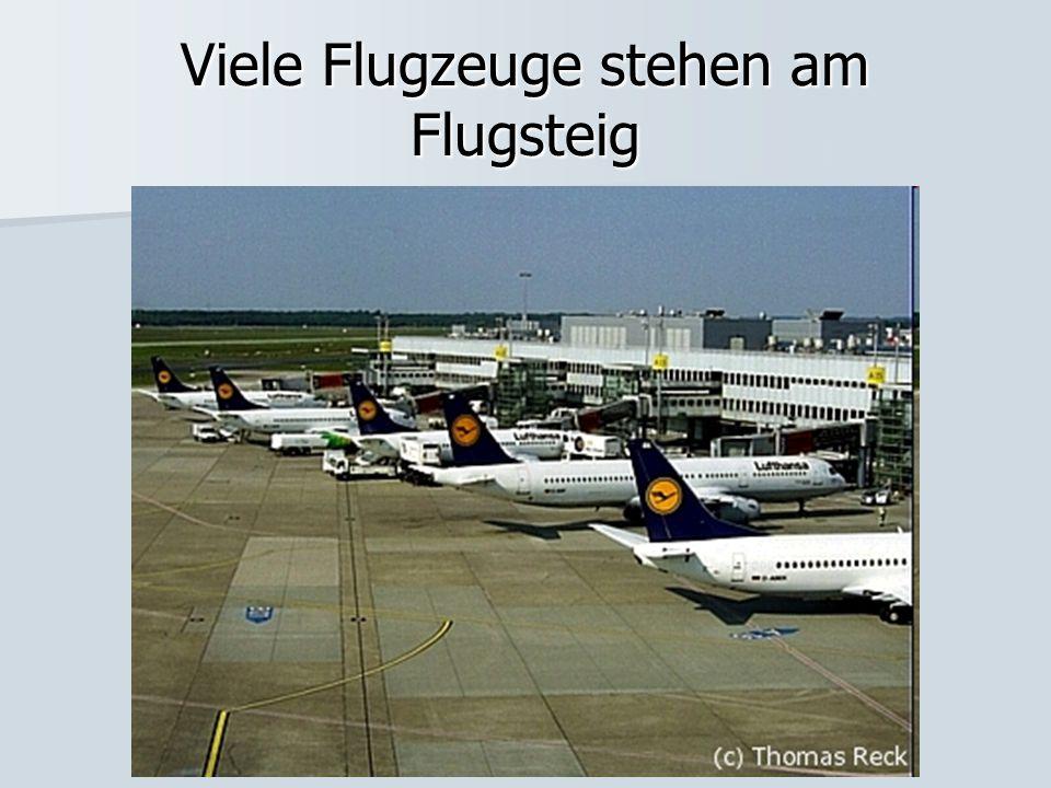 Viele Flugzeuge stehen am Flugsteig