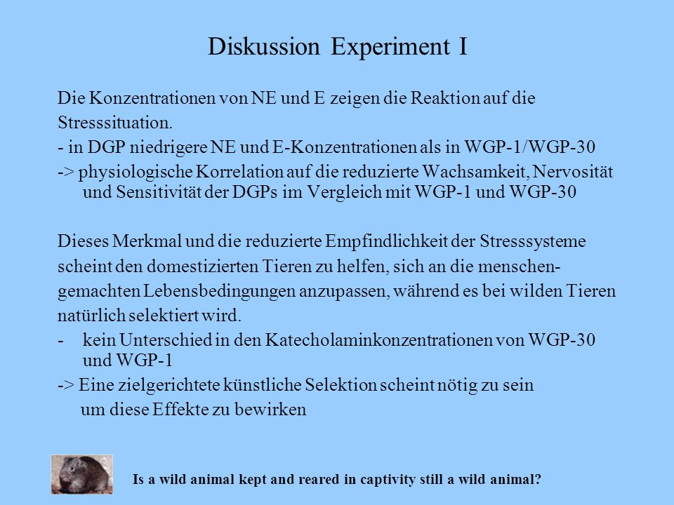 Diskussion Experiment I