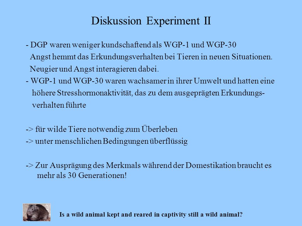 Diskussion Experiment II